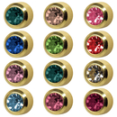 STUDEX Plus Medico round ear studs gold-plated with stone